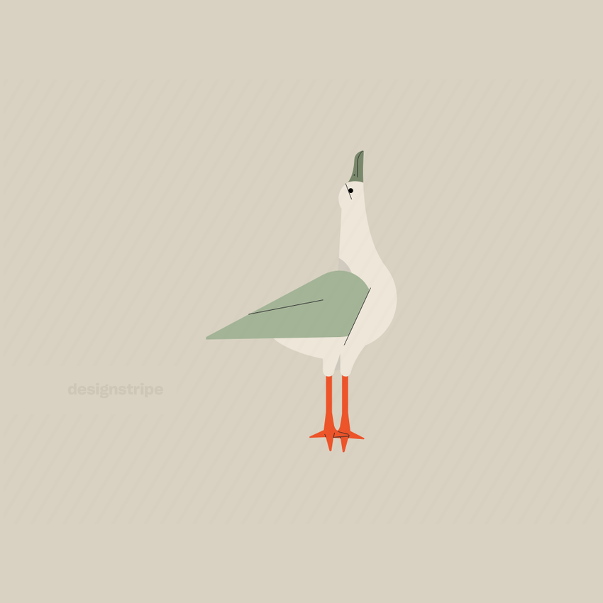 Illustration Of Gull Looking Up