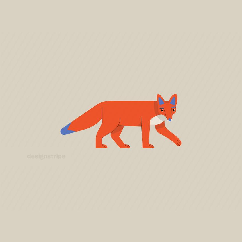 Illustration Of Fox Walking
