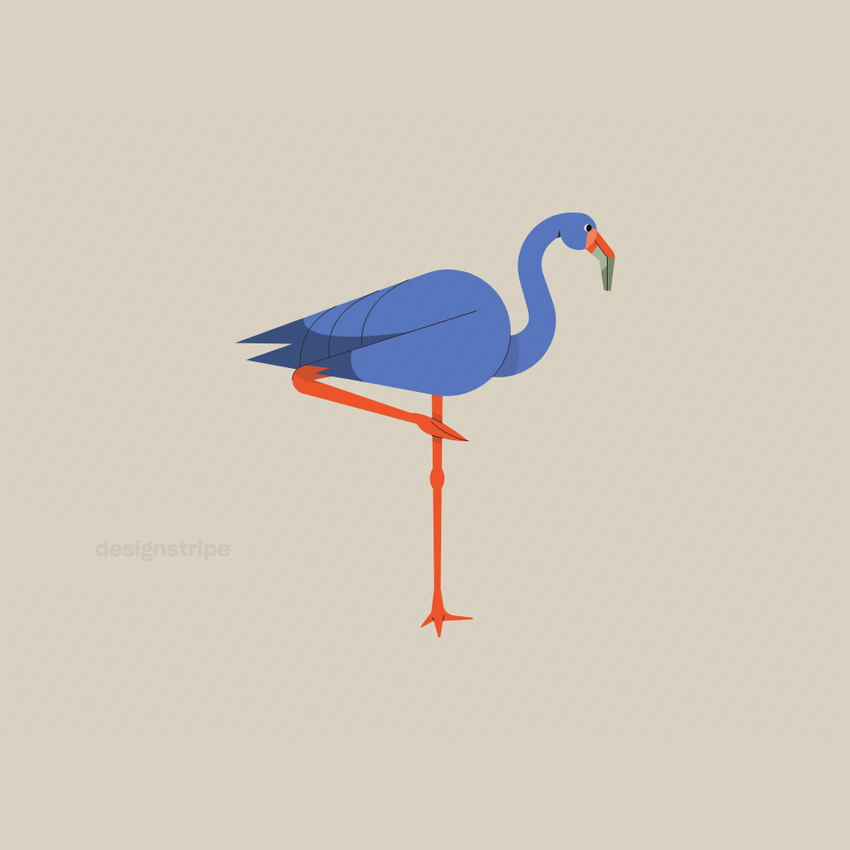 Illustration Of Flamingo Standing On One Leg With Tail Out