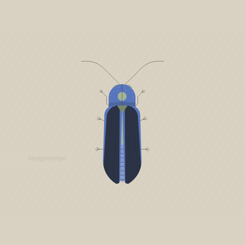 Illustration Of Long Beetle With Wings Partly Open