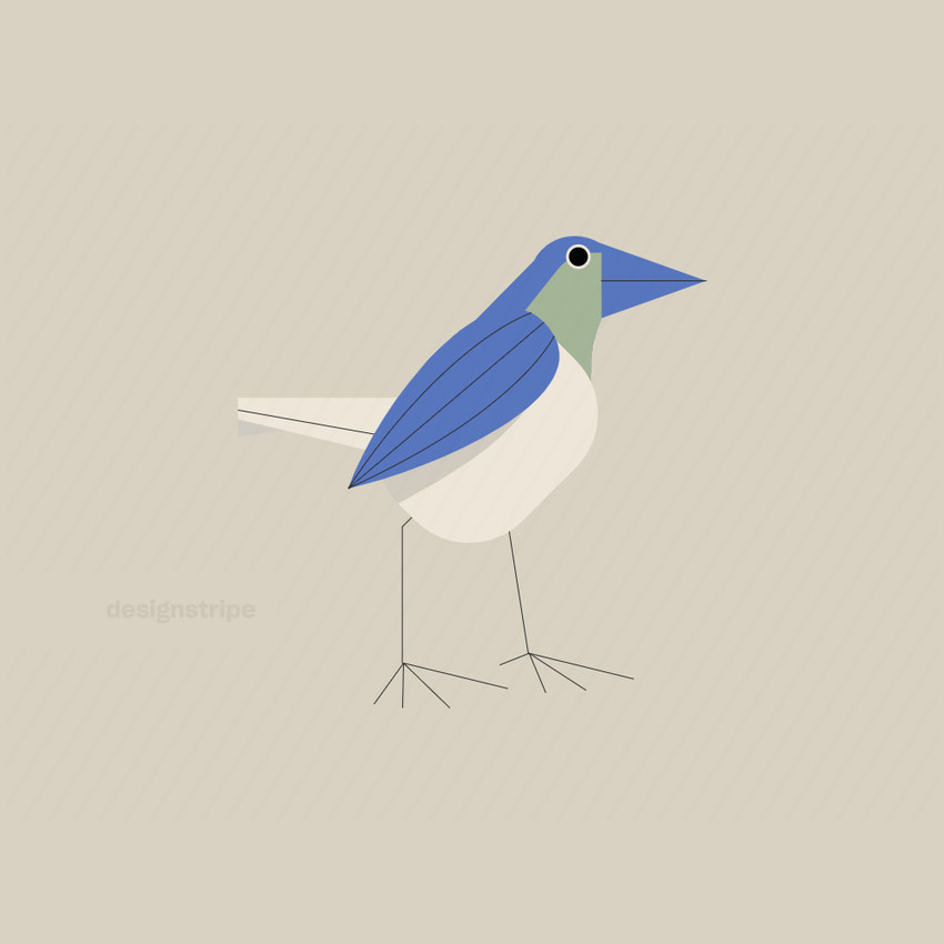 Illustration Of Bird Looking To Side