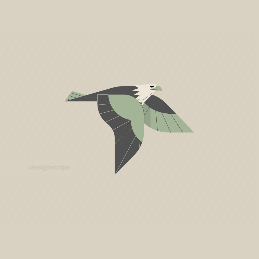 Illustration Of Flying Eagle
