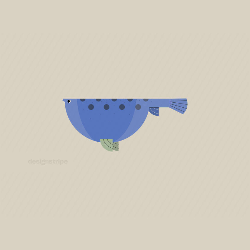 Illustration Of Puffer Fish Swimming In Profile