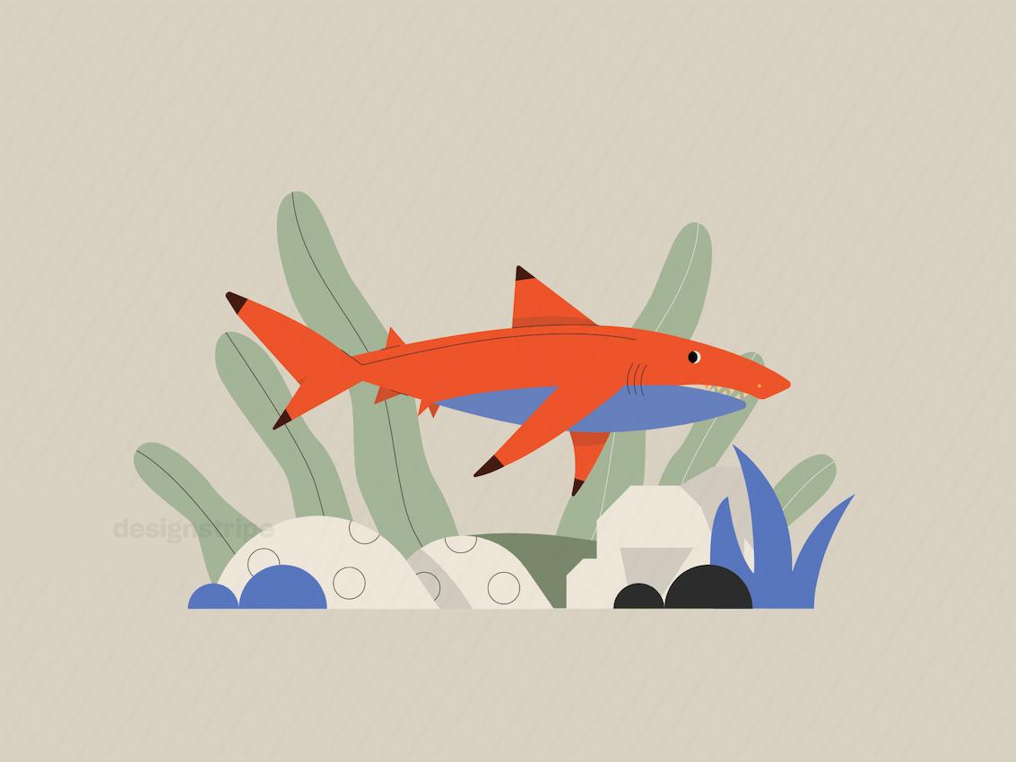 Illustration Of Aquatic Animal Swimming Underwater